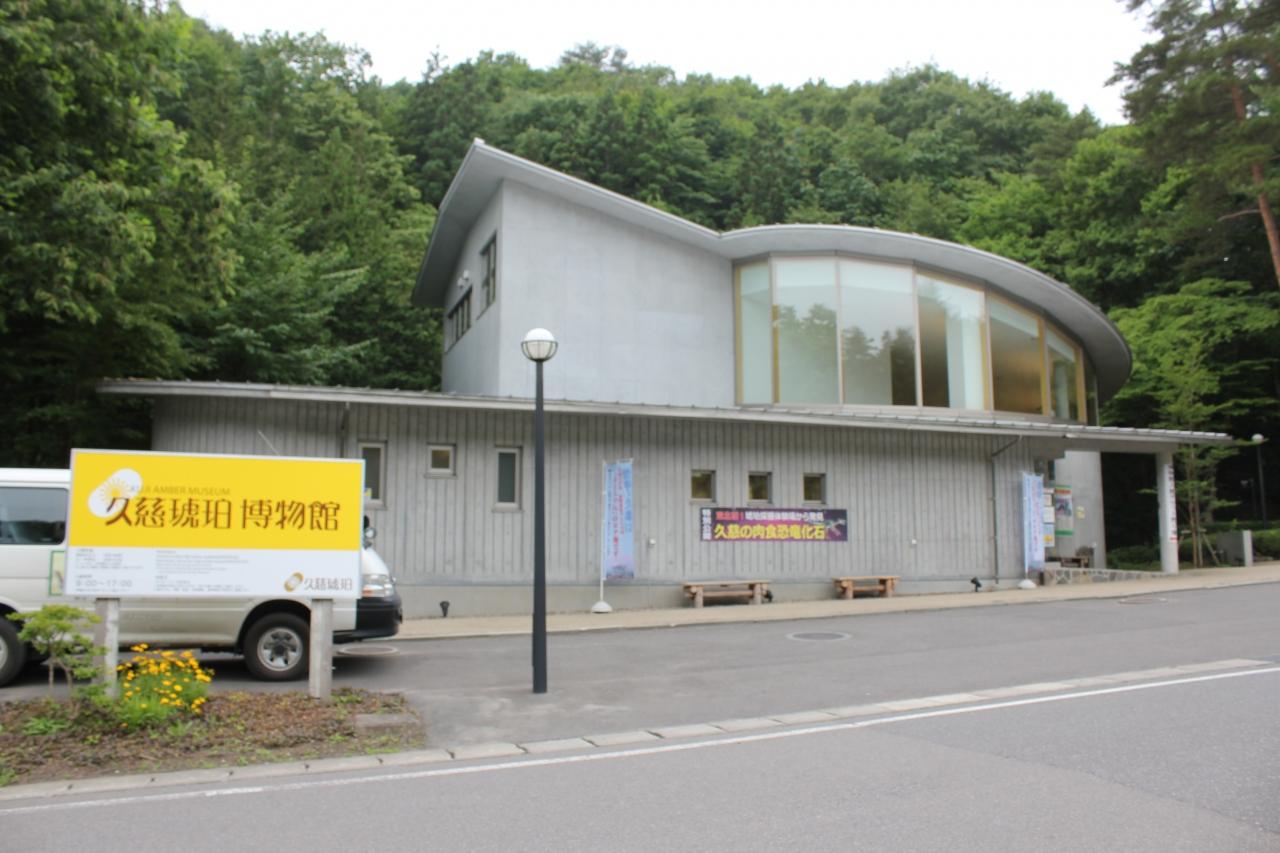 日本で唯一!本物の琥珀採掘が楽しめる「琥珀博物館」